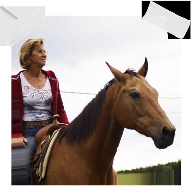 Horsility Austria Ingrid Stiel Horsemanship Westernreiten