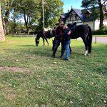 els-kwatawa-ranch wanderreiten wanderritt trailride bohemian wild south track