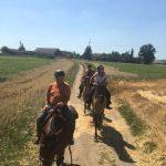 els-kwatawa-ranch wanderreiten wanderritt trailride thayaland