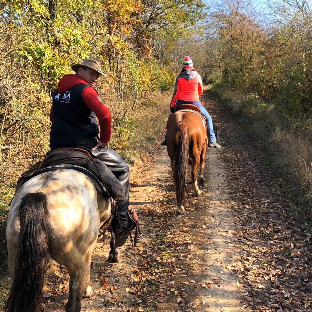 www.els-kwatawa-ranch.at/wp-content/uploads/2020/01/els-kwatawa-ranch_wanderreiten_wanderritt_trailride_weinviertel_20190723_015-1000x1000-1