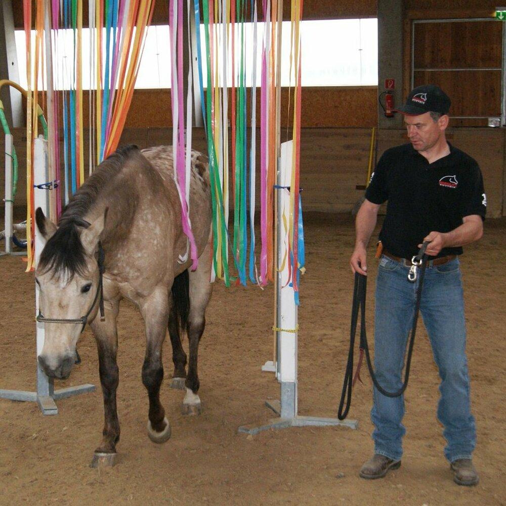 www.els-kwatawa-ranch.at/wp-content/uploads/2020/02/horsility_2